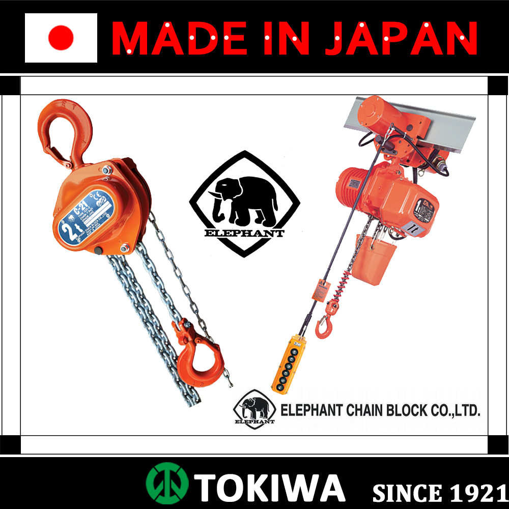 Electric Chain Hoist, with versatility & unrivaled performance, providing safety (electric chain hoist remote control)