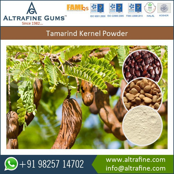 Tamarind Kernel Powder for Different Types of Dyes, Fabrics and Textile Printing Applications