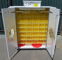 Automatic Eggs Incubators