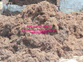DRIED SARGASSUM SEAWEED / POWDER
