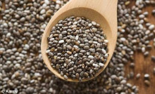 High Quality Chia Seeds ( Salvia hispanica ) 99.99% Purity