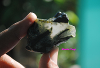 Moss Agate Rough from Java, Indonesia