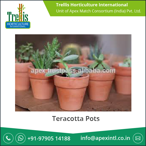 Wholesale Various Quality Teracotta Pots at Considerable Appraisal