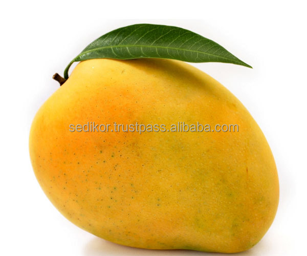 Totapuri Mango Pulp Best Quality - Bulk Supply