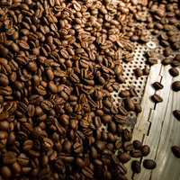 China Washed Green Arabic Green Coffee Bean