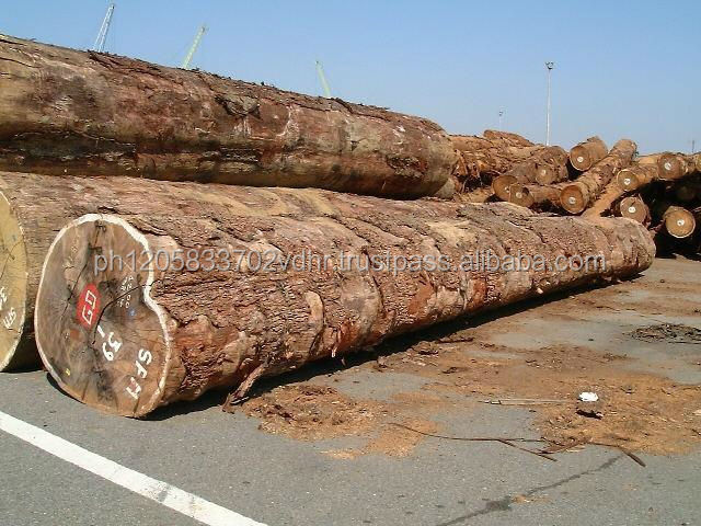 Pachyloba Doussie Tali Padouk Timber Logs and Sawn Lumbers of All Types for Sale