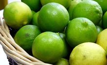 VIET NAM FRESH LEMON/ LIME - SEED AND SEEDLESS - IN SEASON FOR SALE