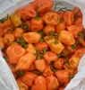 /product-detail/fresh-red-habanero-pepper-for-sale-50034098962.html