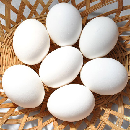 Affordable farm fresh chicken eggs for sale