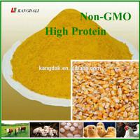 Corn Gluten Meal / Animal Feed / Feed Grade Yellow Corn