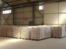 Spruce Wood Pellets For Sale 6-8mm Dinplus certified from Ukraine