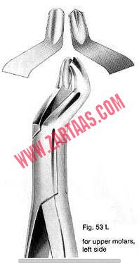 Fig-53 L Extracting Forceps (American Pattern)