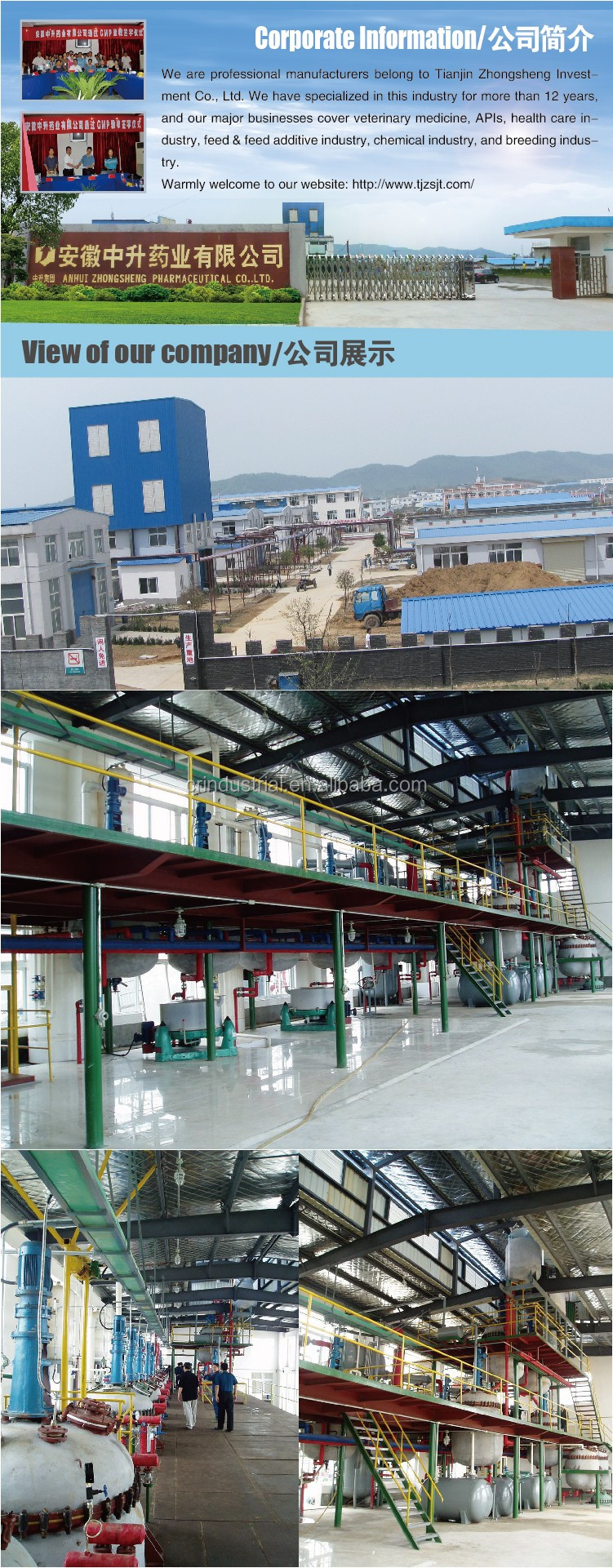 Pharmaceutical Raw Material Saccharin Sodium Factory