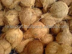 cheap Fresh Semi Husk Coconuts for sale