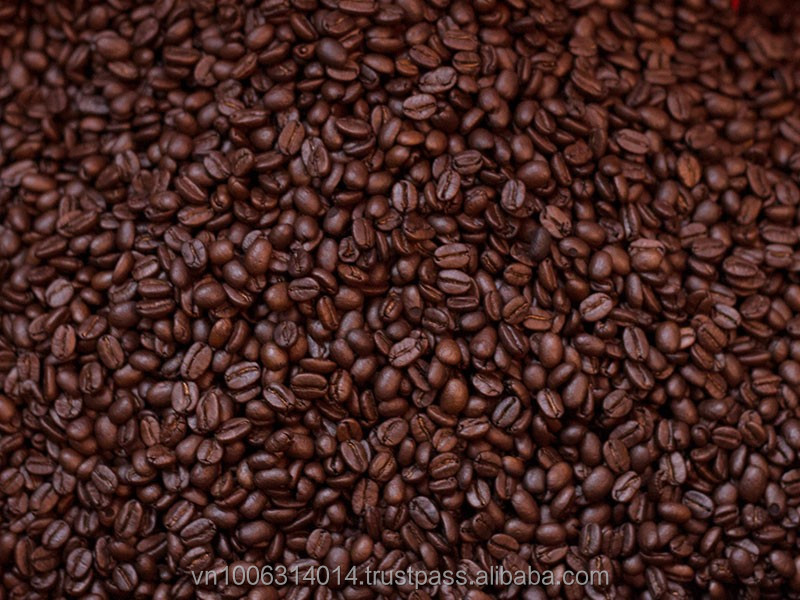 Premium arabica coffee beans for coffee and cocoa buyer