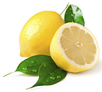 Fresh Citrus Fruits /Yellow Lemon & Lime, yellow Eureka fresh lemon