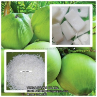 FROZEN COCONUT MEAT & OTHER COCONUT PRODUCTS (MEAT/MILK/OIL)- VIETNAM