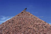Pine and Beech Wood Chips