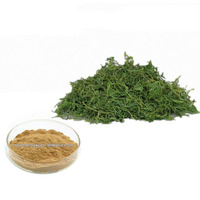 High Purity Natural Gynostemma Pentaphyllum Extract