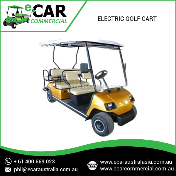 6 Seater Electric Buggy with Long Battery Life