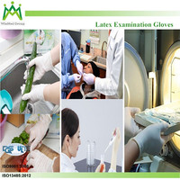 hair salons/Cleaning/food processing Properties OEM disposable gloves