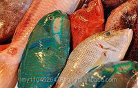 Fresh Seafood, Frozen Seafood & Dried Seafood Products