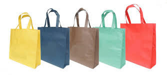 Non woval Shopping Bags/ Reusable Grocery Bags