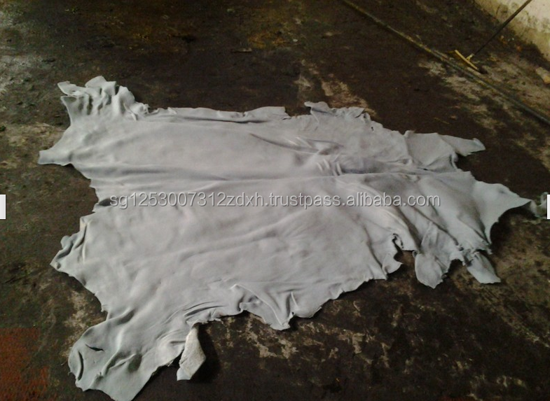 Wet Salted Donkey Hides/ Cow Hides/Sheep / Goat Skin