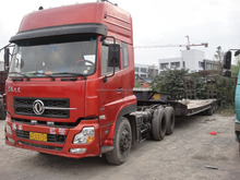 Volvo/Benz dump truck for sale, 4x4/6x6/8x8 dump truck avaliable
