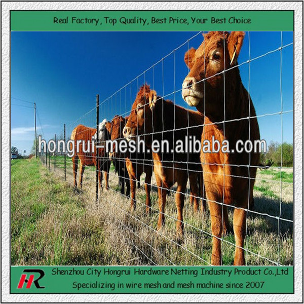 We are manufacturer! Hongrui offered galvanized high carbon steel cattle fence