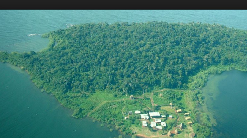 Island Farm Land for sale