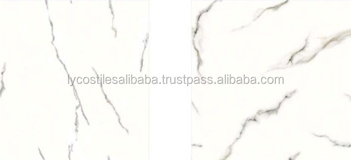 The Greatest Variety in Floor Tiles 60x60cm exp lyc01-(027423404414)