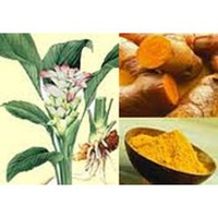 100% Pure and Natural Turmeric Leaf Essential Oil