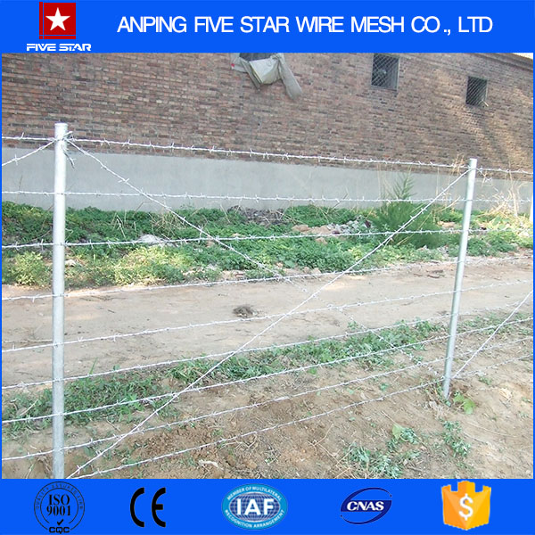 Alibaba Factory Galvanzied Barbed Wire Roll Fence With Low Prices