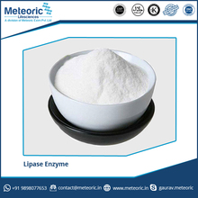 Best Quality Lipase Enzyme for Yogurt and Cheese Fermentation