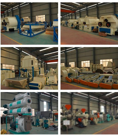 2017 hot sale Ring die Cattle sheep chicken animal feed cutting machine