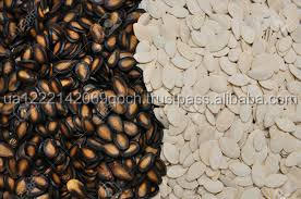 Pumpkin seed / Watermelon seed