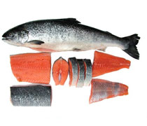 Wholesale Frozen Wild Pink/Chum Salmon Fish/Atlantic Salmon/Pacific Salmon