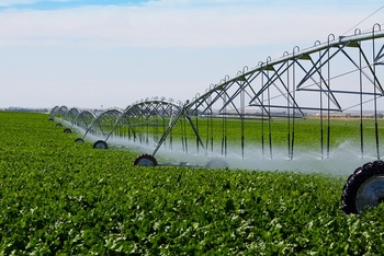 Agriculture Water & Irrigation Systems & Solutions