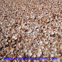 Hot Selling Dry Coconut Copra