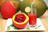 GAC FRUIT FLAVOR for Bakery & ice-cream & Yogurt & sauce and so on