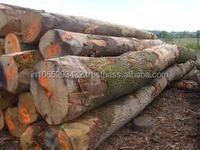 TEAK TYPE ROUND SHAPE WOODEN LOGS FOR FACTORY PRICE