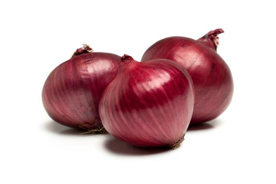 onions importers