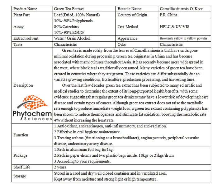 Hot sale matcha green tea extract/Camellia Sinensis O. Ktze. extract/30%~98% Polyphenols 10%~98% EGCG 80% Catechins/Lv Cha