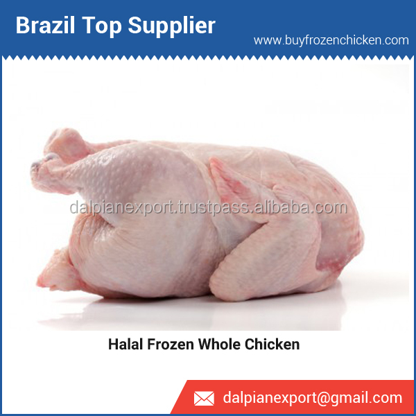 Top Brazilian Supplier Selling Frozen Whole Chicken