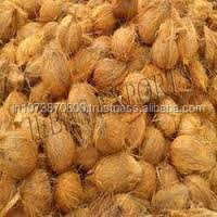 Whole Dried Indian Coconut at best price to Brazil