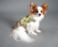 Wholeslae Dogs Clothing For Lovely Pets