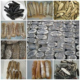 Dried sea cucumber resonable price, high quality