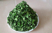 Best price moringa dried leaves, best quality of moringa