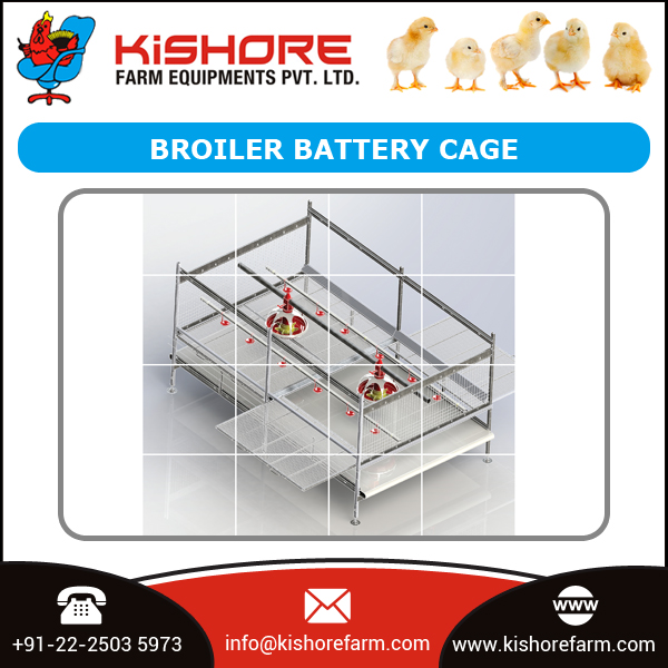 Hot Demanded Broiler Poultry Battery Cage at Low Price